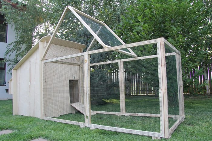 Chicken Coop with Nesting Box